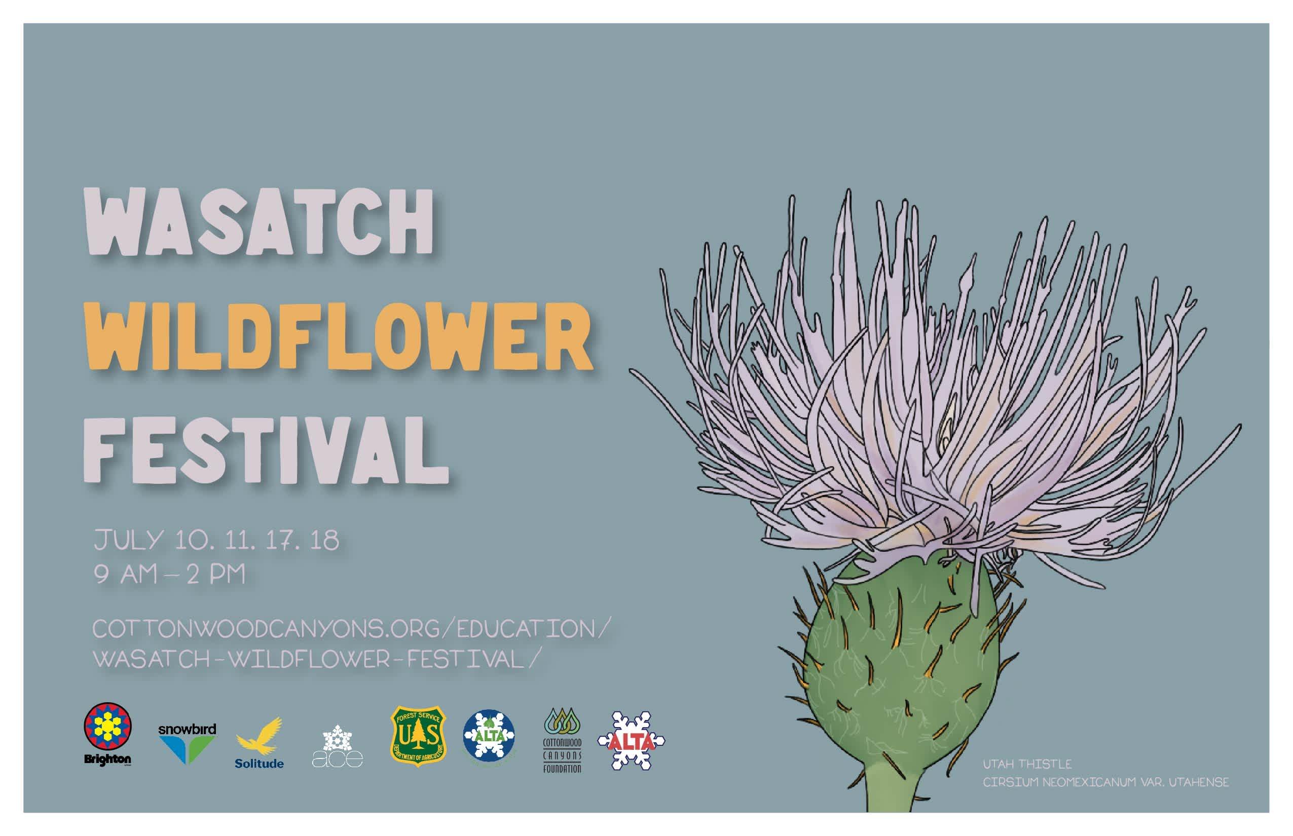 2021 Wasatch Wildflower Festival - Alta