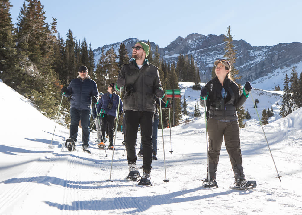 Group of snowshoers led by naturalist at Alta