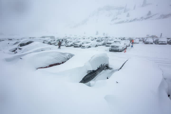 Alta's parking lot full of cars and covered in snow