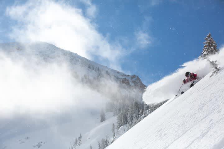 Amy David skis deep powder on a sunny day