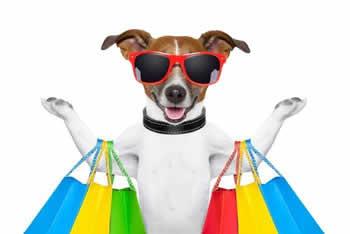 shoppings liberam acesso de pets em Fortaleza