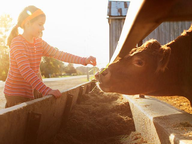 חקלאי ליום בסנטר פארקס.jpg