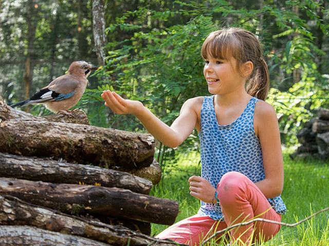 לגלות את הציפורים בסנטר פארקס.jpg