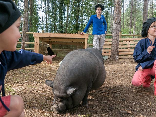 רוצה להיות עובד גן חיות בסנטר פארקס