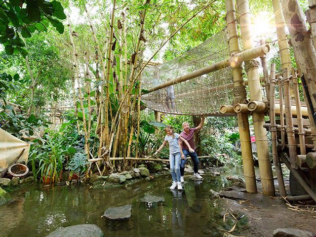 Jungle Dome בסנטר פארקס.jpg