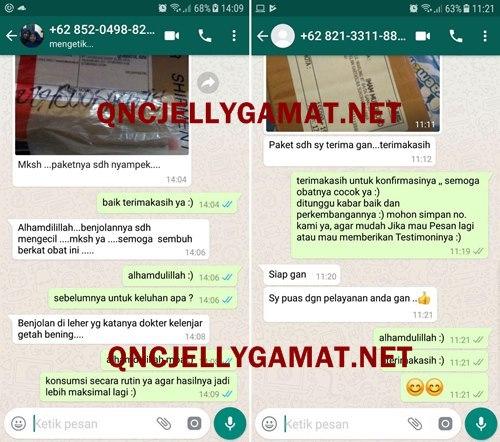 QNC JELLY GAMAT - EKSTRAK TERIPANG EMAS BERKUALITAS