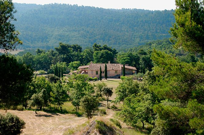 Luberon Vineyard Mansion
