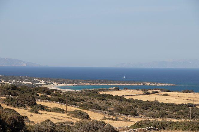 Modern Villa Naxos
