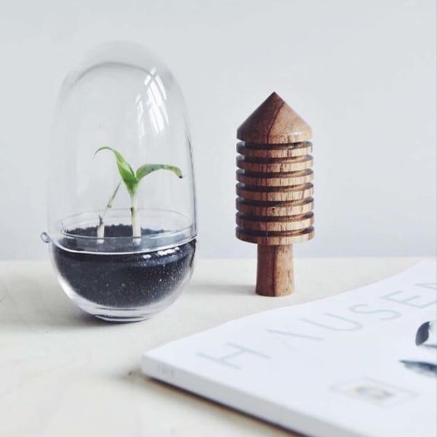 Grow Gewächshaus Glas