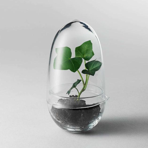 grow gew chshaus glas design house stockholm amazcy. Black Bedroom Furniture Sets. Home Design Ideas