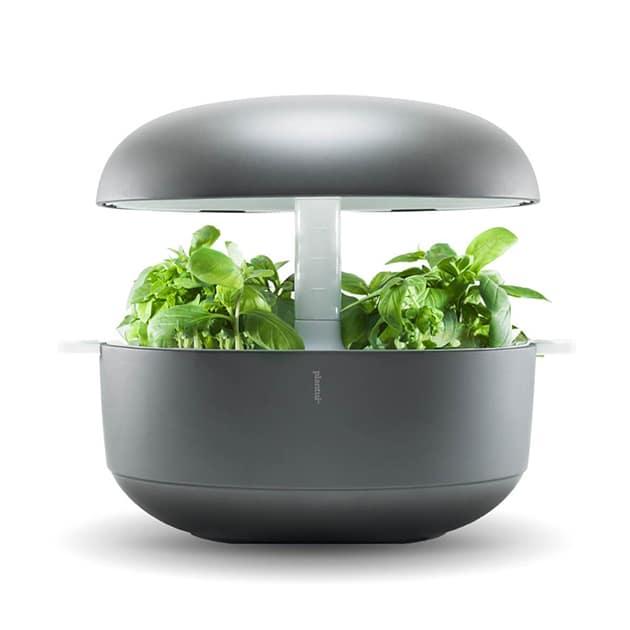 Smart Garden – Plantui 6