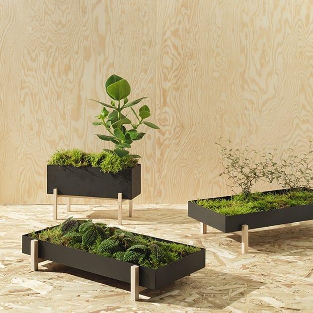 Botanic Box von Design House Stockholm – eine grüne Oase für Dein Zuhause