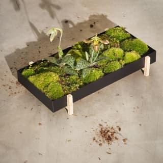 Design House Stockholm - Blumenschale als Grünfläche für den Wohnbereich
