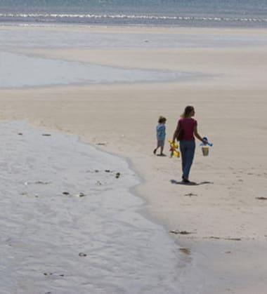Blog Thumbnail - Dog friendly beaches on the Roseland