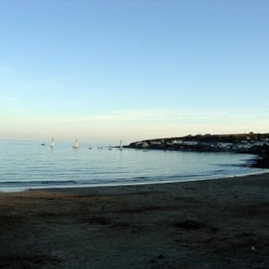 Blog Small Thumbnail - Top 10 dog friendly beaches in Cornwall