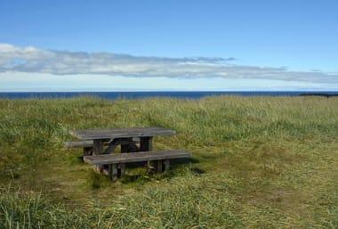 Blog Thumbnail - A Country Walk with Sea Views