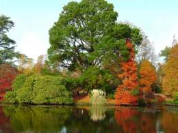 Sheffield Park Garden - East Sussex click to go to site.