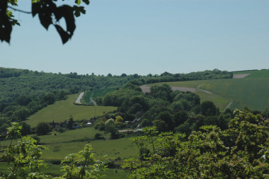 Blog Thumbnail - Visions of Sussex