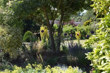Blog Thumbnail - Sussex Cottage Gardens