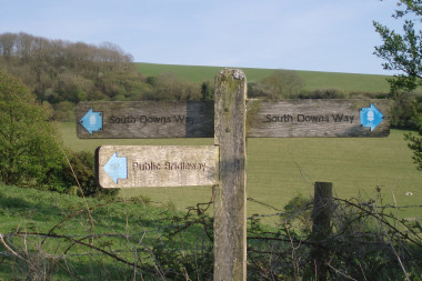 Blog Thumbnail - Explore The Beauty Of The South Downs
