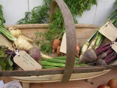 Blog Thumbnail - Food and fairs in Sussex