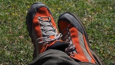 Blog Small Thumbnail - A short walk on the South Downs