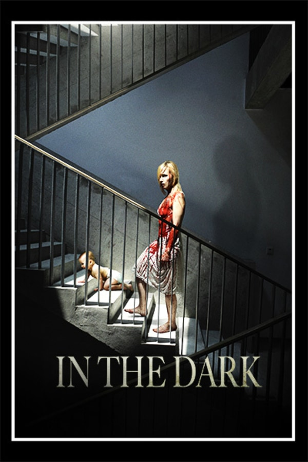 In the Dark (aka The Sublet)