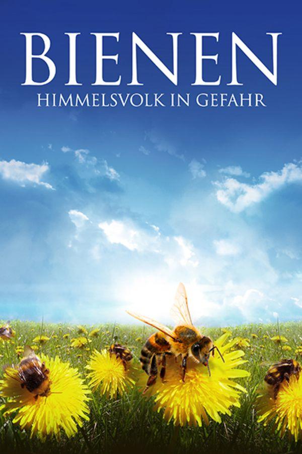 Bienen Himmelsvolk in Gefahr