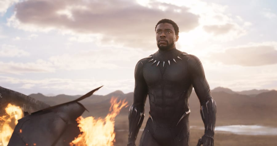 Black Panther in Black Panther