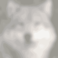 parc les loups de gevaudan