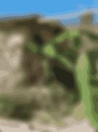 Les plantations de le Ferme de Samson