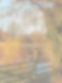 pont - Le manoir de herouville