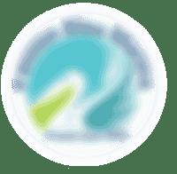 logo Passion bleu marine