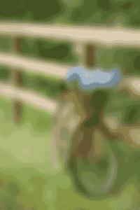 véloscénie - colombier de hanches