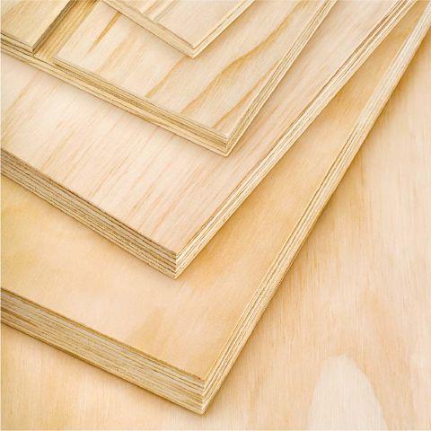 Arauco 4' x 8' AC Grade Radiata Pine Sanded Panels