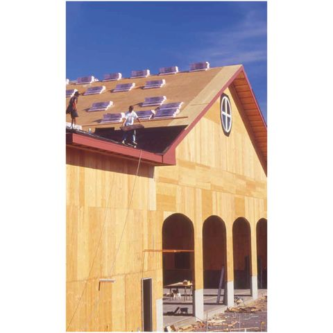 CD Fir Plywood Sheathing - 4Ply
