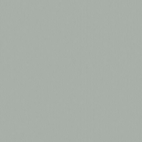 """Prism Fog Gray (SF213) TFL - P/B Core G2S Velvet 3/4"""" 61x145"""