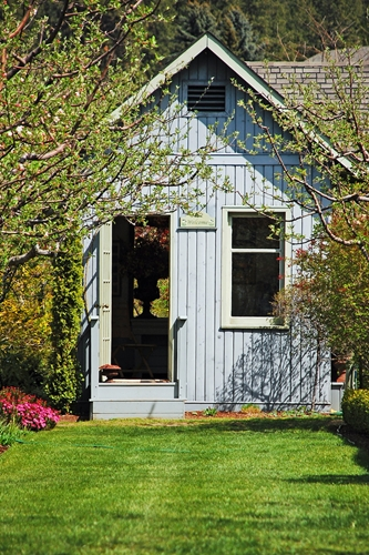 An inspired shed can add some pop to any backyard.