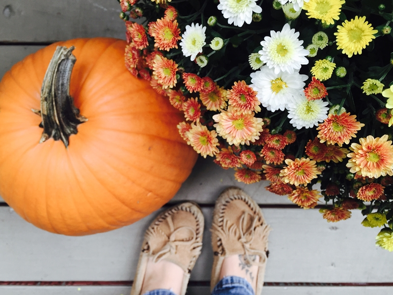 Pumpkins and autumn flowers are perfect for completing your fall deck decor.
