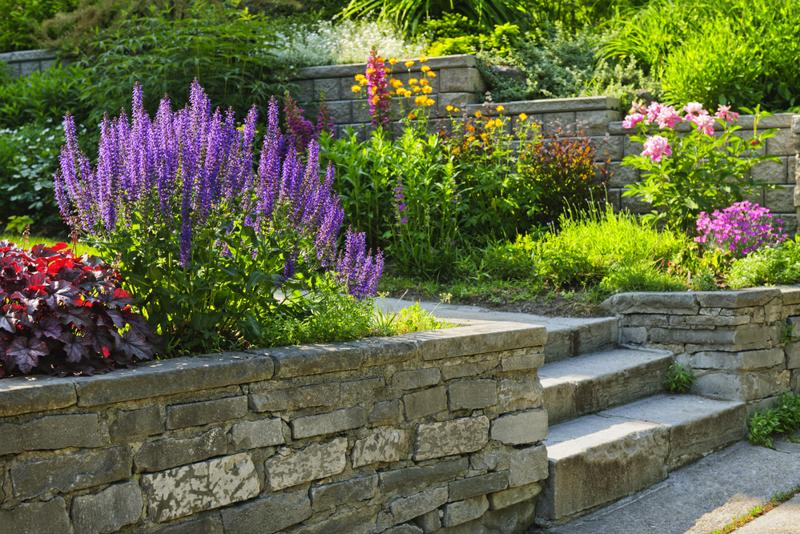 Enhance your home's curb appeal by investing in your front yard.