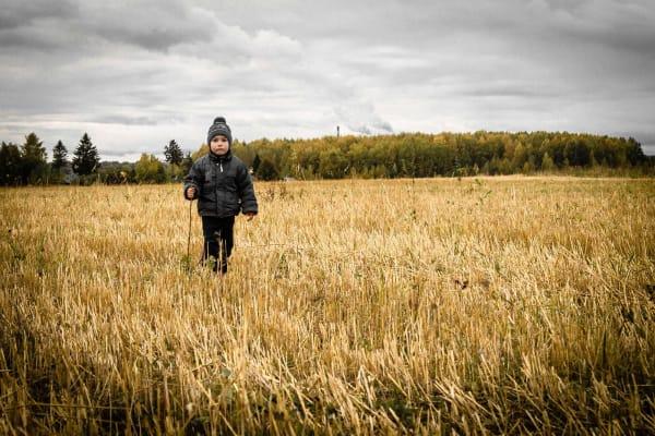 در خلوت یک گندم زار