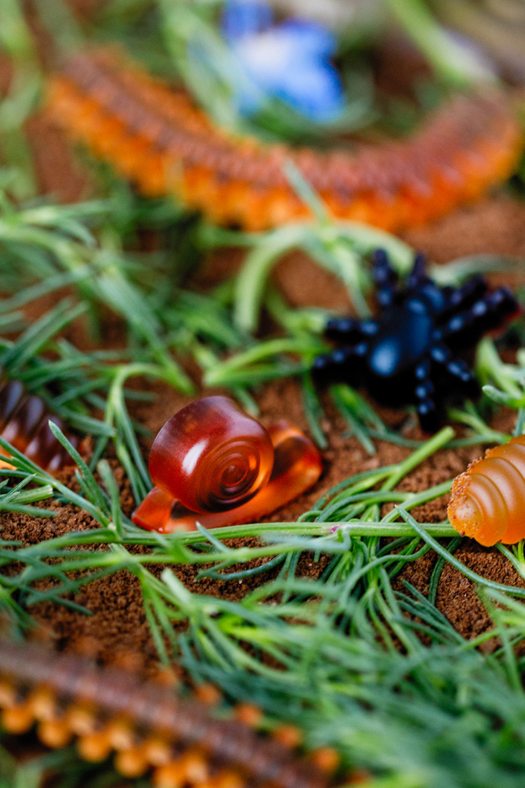Amoretti Gummy Grubs Recipe