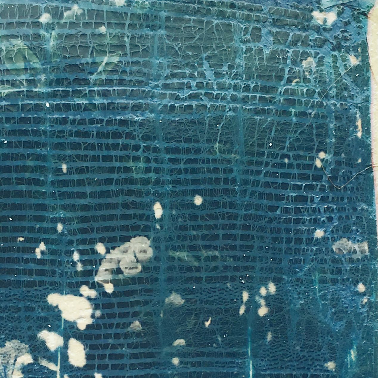 """The dreaded """"stucco,"""" titanium dioxide, interfering with the photograph through its cracked-up texture."""