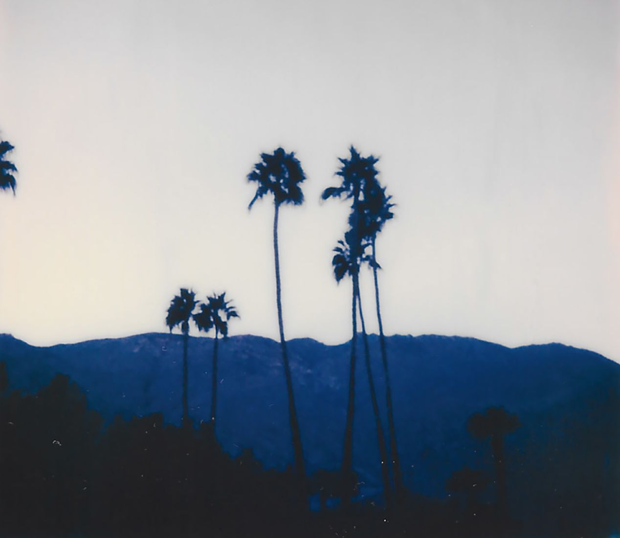 Early Morning in Palm Springs, California. Taken with a Polaroid 600 Camera and Polaroid Originals 600 Film