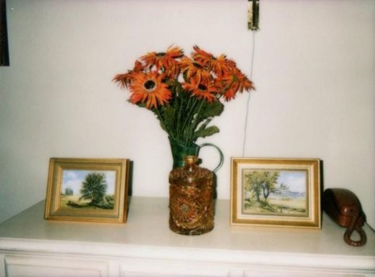 Photo from my 93-year-old grandma's assisted living apartment. Taken with Instax Mini 8.