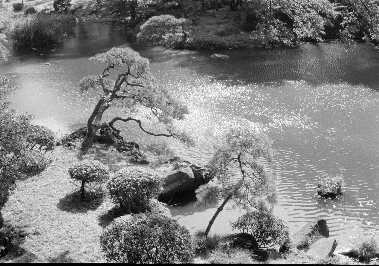 At a Tokyo garden. Neopan Acros with Vitessa L.