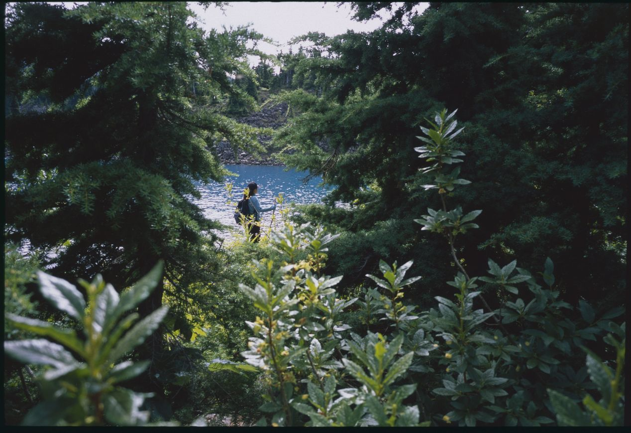 Minolta G-Rokkor 28mm on Fujifilm Provia 100F.