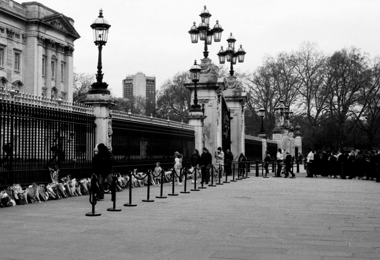 Flowers laid at the gates: Buckingham Palace, London, 9-10 April 2021. Taken with the Canon EF and an NFD 50 mm f./1.4 on Eastman Double-X film.
