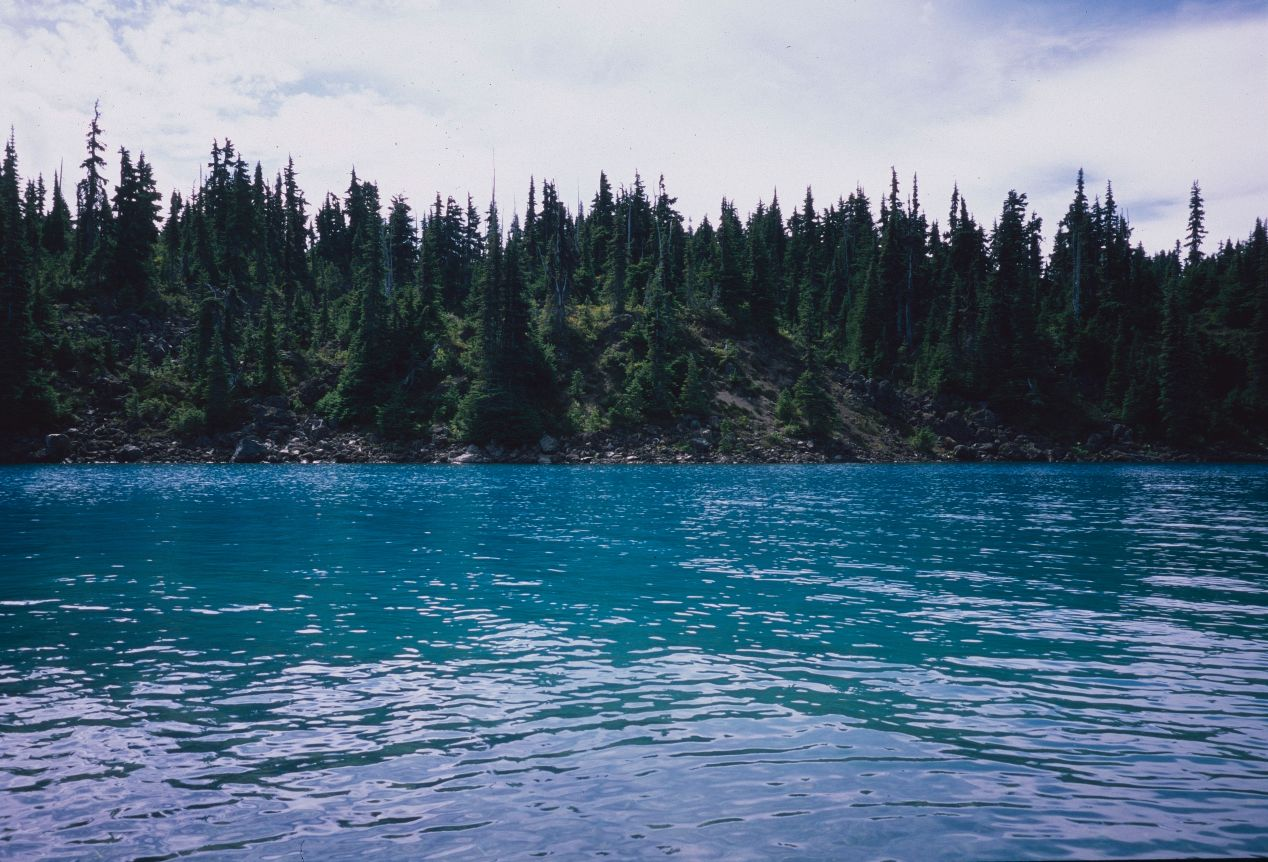 This August, I got a chance to visit Garibaldi Provincial Park, about an hour's drive from home. The incredible jade-coloured lake at its heart, above, is faithfully rendered on Fujifilm Provia 100 with 28mm TC-1 lens and scanned on PrimeFilm XA. The slide was developed (and framed!) at a local pharmacy, London Drugs.