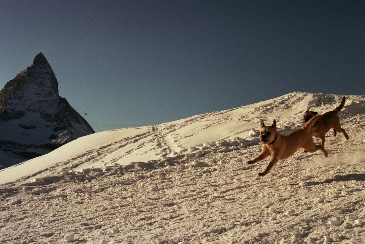 Jumpin good. — Zermatt.